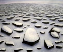 Antartica Rocks