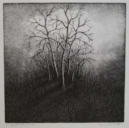 "Untitled, dry point, etching, aquatint and ink, 9"" x 9"", 2010."